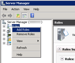 Server Manager - Add Role