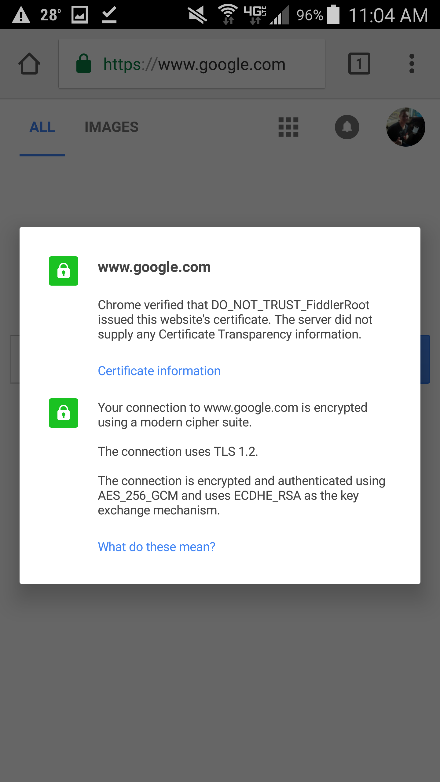 Trace jack stromberg note here you can validate that the ssl certificate used is fiddlers root certificate this is a good sign that we are intercepting the traffic xflitez Gallery